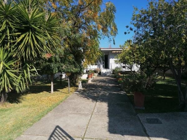 Casa indipendente in vendita a Ascea, Velia, Con giardino, 100 mq - Foto 9