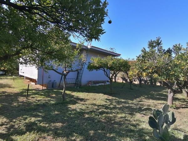 Casa indipendente in vendita a Ascea, Velia, Con giardino, 100 mq - Foto 10