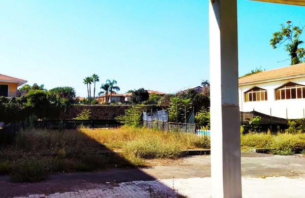 Locale Commerciale  in vendita a San Giovanni la Punta, Con giardino, 4200 mq - Foto 5