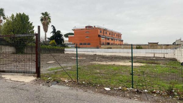 Locale Commerciale  in affitto a Cercola, Centrale, 1000 mq - Foto 1