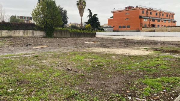 Locale Commerciale  in affitto a Cercola, Centrale, 1000 mq - Foto 2