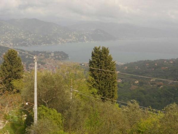 Villa in vendita a Santa Margherita Ligure, S.lorenzo Della Costa, Con giardino, 300 mq - Foto 9