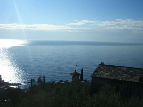 Villa in vendita a Zoagli, S.pantaleo, Con giardino, 170 mq - Foto 1