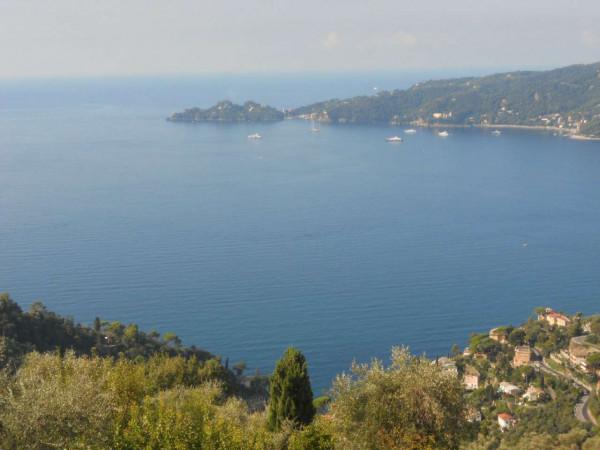 Villa in vendita a Zoagli, Cornice Di S.ambrogio, Con giardino, 150 mq - Foto 16