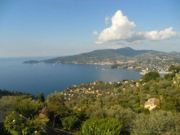 Villa in vendita a Zoagli, Cornice Di S.ambrogio, Con giardino, 150 mq - Foto 1