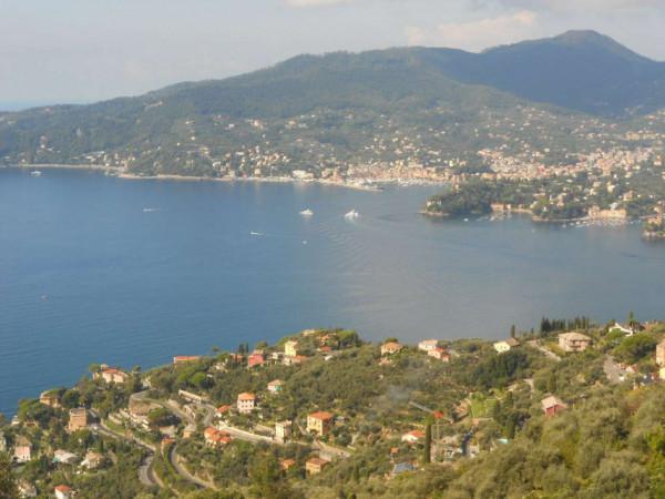 Villa in vendita a Zoagli, Cornice Di S.ambrogio, Con giardino, 150 mq - Foto 23