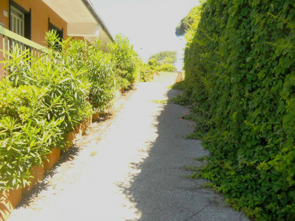Casa indipendente in vendita a Moneglia, Lemeglio, Con giardino, 1000 mq - Foto 11