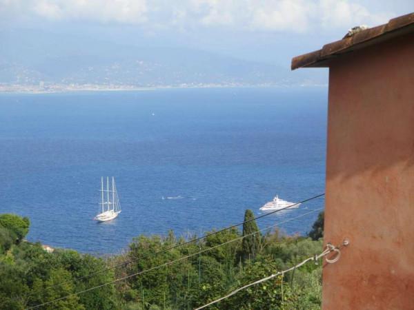 Appartamento in vendita a Portofino, Terruzzo, Con giardino, 160 mq - Foto 15