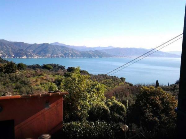 Appartamento in vendita a Portofino, Terruzzo, Con giardino, 160 mq - Foto 17