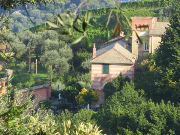 Appartamento in vendita a Portofino, Terruzzo, Con giardino, 160 mq - Foto 13