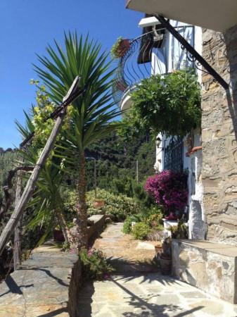 Rustico/Casale in vendita a Riomaggiore, Fossola, Con giardino, 100 mq - Foto 22