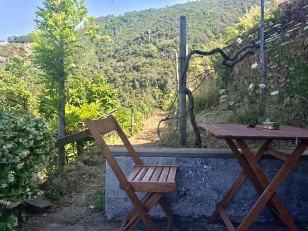 Rustico/Casale in vendita a Riomaggiore, Fossola, Con giardino, 100 mq - Foto 21