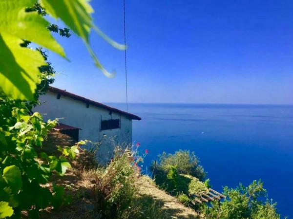 Rustico/Casale in vendita a Riomaggiore, Fossola, Con giardino, 100 mq - Foto 15
