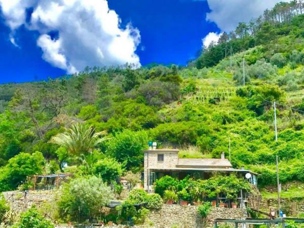Rustico/Casale in vendita a Riomaggiore, Con giardino, 100 mq