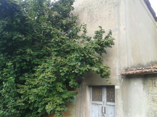 Casa indipendente in vendita a Solarolo, Periferia, 580 mq - Foto 5