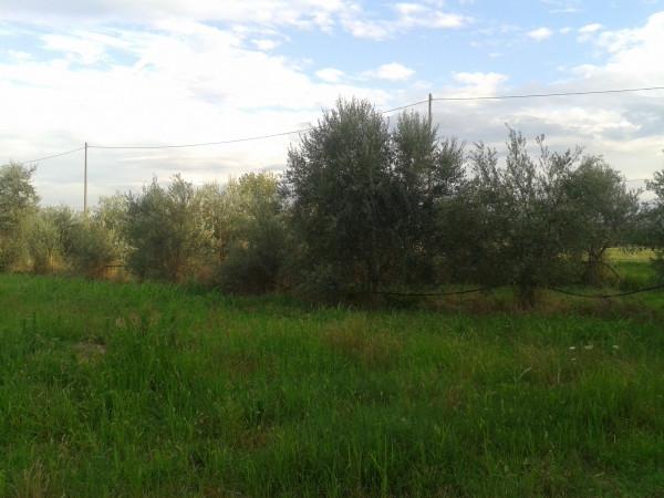 Casa indipendente in vendita a Solarolo, Periferia, 580 mq - Foto 8