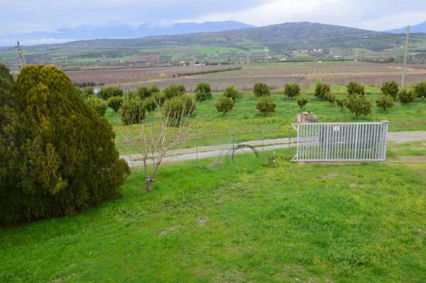 Villa in vendita a Castrovillari, Cammarata, Con giardino, 350 mq - Foto 10