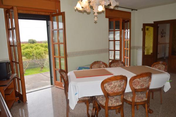 Villa in vendita a Castrovillari, Cammarata, Con giardino, 350 mq - Foto 8
