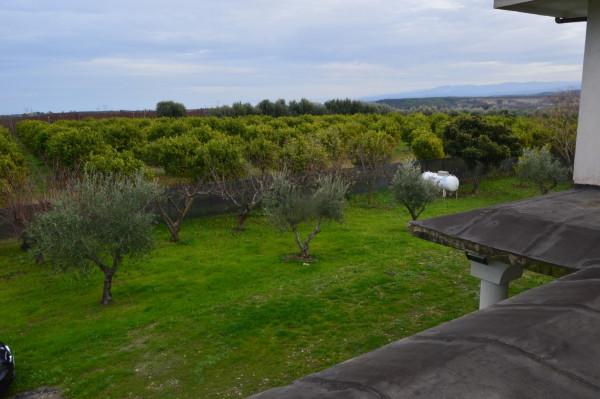 Villa in vendita a Castrovillari, Cammarata, Con giardino, 350 mq - Foto 9