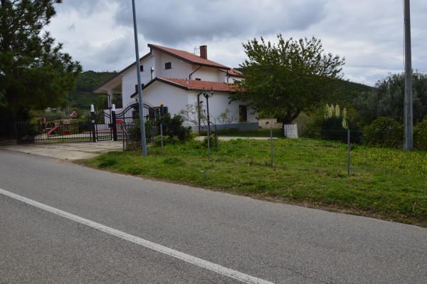 Villa in vendita a San Demetrio Corone, C.da Cacossa, Con giardino, 400 mq - Foto 3