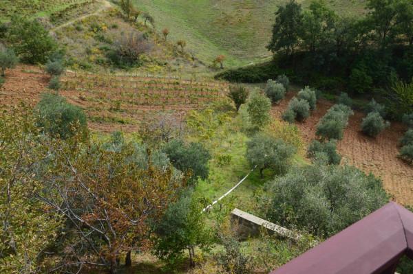 Villa in vendita a San Demetrio Corone, C.da Cacossa, Con giardino, 400 mq - Foto 16