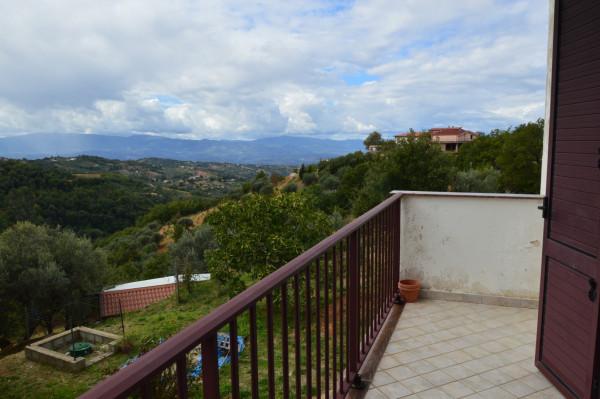 Villa in vendita a San Demetrio Corone, C.da Cacossa, Con giardino, 400 mq - Foto 40