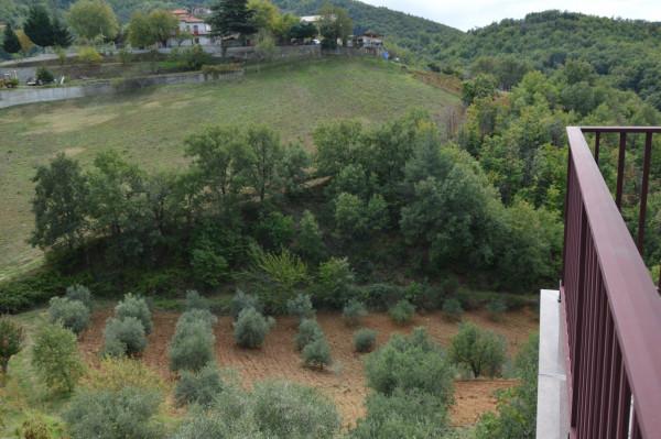 Villa in vendita a San Demetrio Corone, C.da Cacossa, Con giardino, 400 mq - Foto 20
