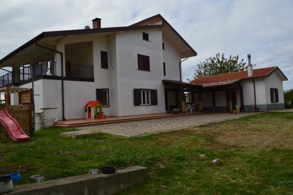 Villa in vendita a San Demetrio Corone, C.da Cacossa, Con giardino, 400 mq - Foto 43