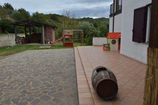 Villa in vendita a San Demetrio Corone, C.da Cacossa, Con giardino, 400 mq - Foto 9