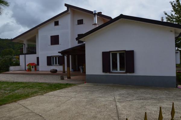 Villa in vendita a San Demetrio Corone, C.da Cacossa, Con giardino, 400 mq - Foto 44