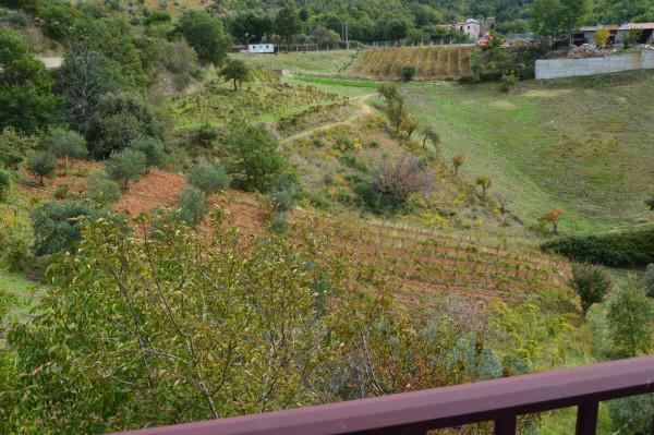Villa in vendita a San Demetrio Corone, C.da Cacossa, Con giardino, 400 mq - Foto 21