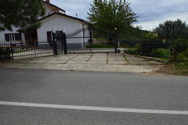 Villa in vendita a San Demetrio Corone, C.da Cacossa, Con giardino, 400 mq - Foto 4