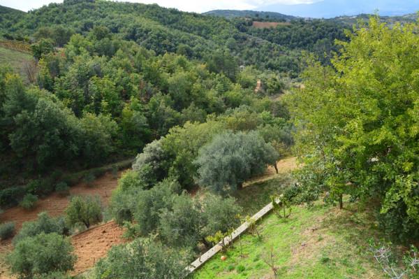Villa in vendita a San Demetrio Corone, C.da Cacossa, Con giardino, 400 mq - Foto 17