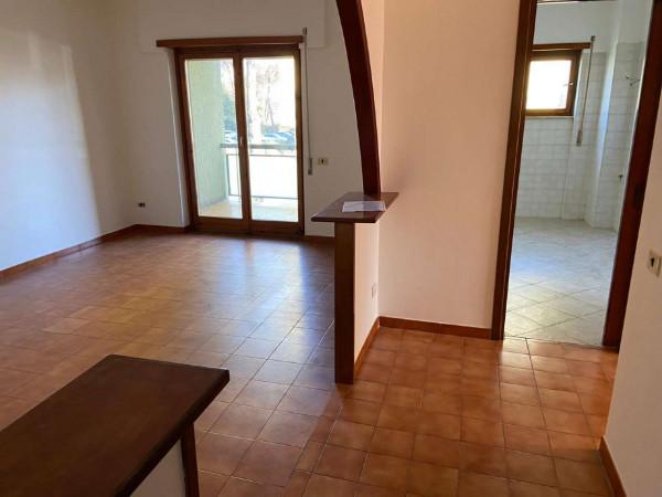 Appartamento in vendita a Roma, Torrino, Con giardino, 95 mq - Foto 20