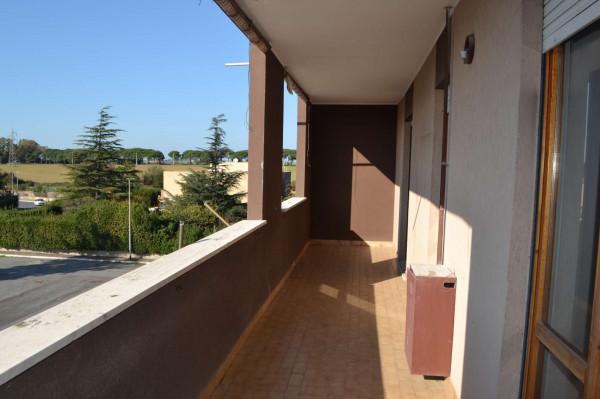 Appartamento in affitto a Roma, Dragoncello, Con giardino, 70 mq