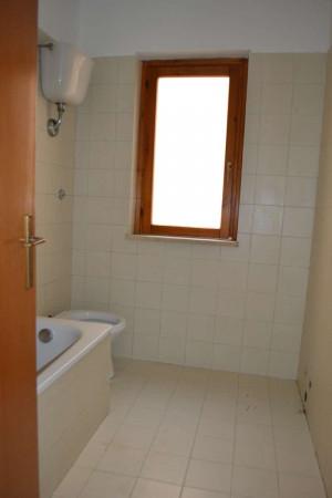 Appartamento in affitto a Roma, Dragoncello, Con giardino, 70 mq - Foto 5