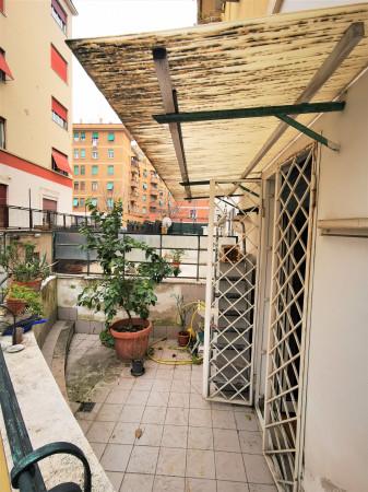 Trilocale in affitto a Roma, Villa Lais, 75 mq - Foto 5