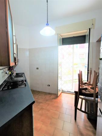 Trilocale in affitto a Roma, Villa Lais, 75 mq - Foto 8