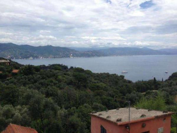 Appartamento in vendita a Portofino, Terruzzo, Con giardino, 160 mq - Foto 20