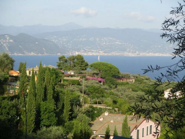 Appartamento in vendita a Portofino, Terruzzo, Con giardino, 160 mq - Foto 14