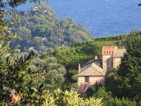 Appartamento in vendita a Portofino, Terruzzo, Con giardino, 160 mq - Foto 12