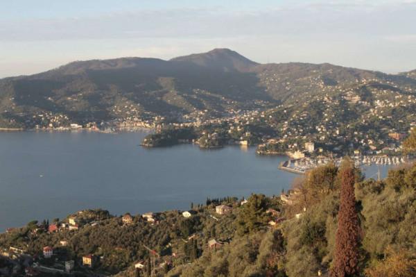 Villa in vendita a Zoagli, Cornice Di S.ambrogio, Con giardino, 150 mq - Foto 20