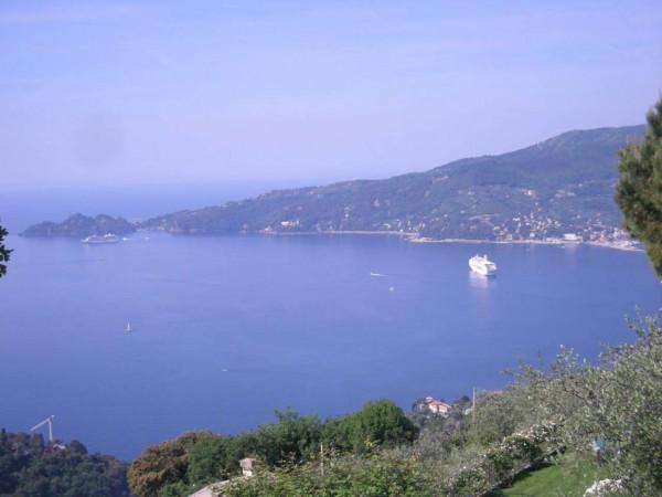 Villa in vendita a Zoagli, Cornice Di S.ambrogio, Con giardino, 150 mq - Foto 17