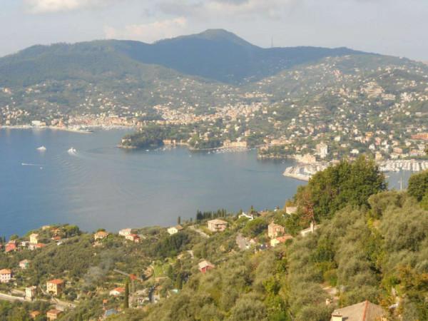 Villa in vendita a Zoagli, Cornice Di S.ambrogio, Con giardino, 150 mq - Foto 15