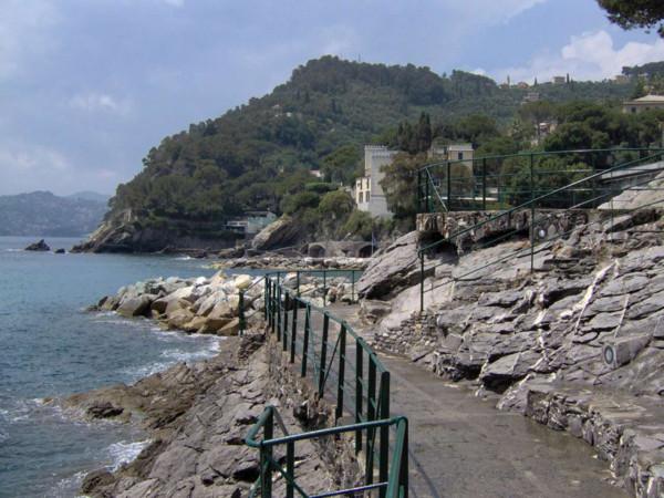 Villa in vendita a Zoagli, Cornice Di S.ambrogio, Con giardino, 150 mq - Foto 5