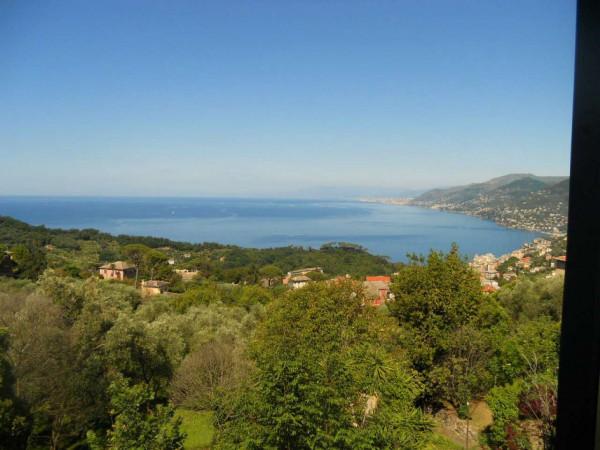 Villa in vendita a Camogli, Con giardino, 600 mq - Foto 6