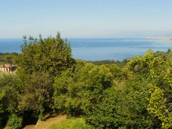 Villa in vendita a Camogli, Con giardino, 600 mq - Foto 5