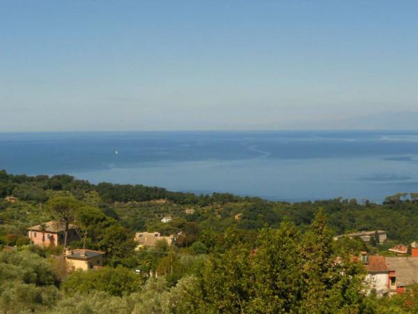 Villa in vendita a Camogli, Con giardino, 600 mq - Foto 3