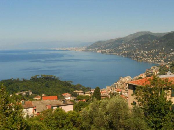 Villa in vendita a Camogli, Con giardino, 600 mq - Foto 4