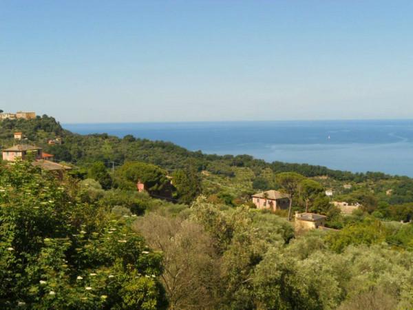Villa in vendita a Camogli, Con giardino, 600 mq - Foto 22